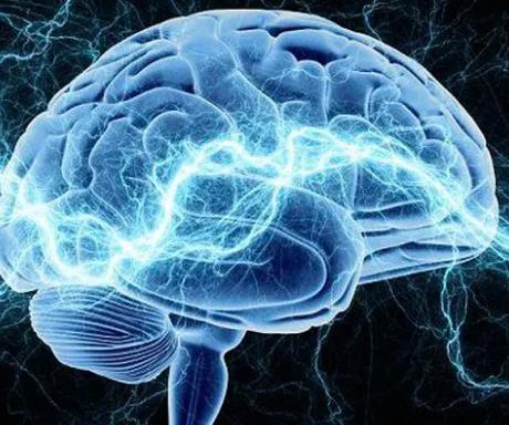 研究人员将大脑的微观细节带入更清晰的焦点