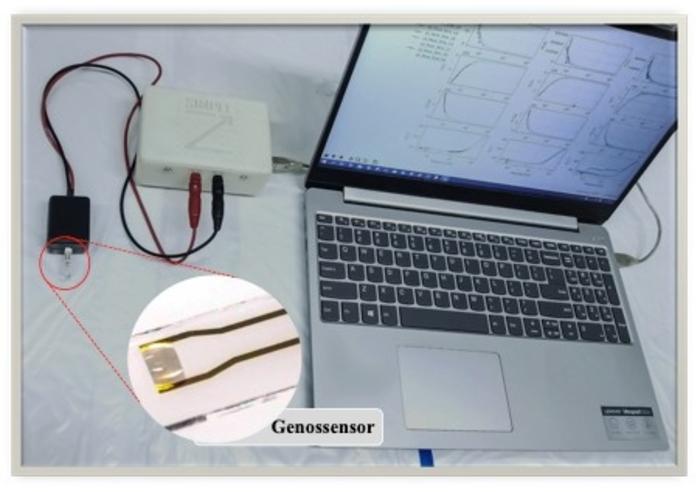 生物传感器允许超快速和廉价地检测SARS-CoV-2