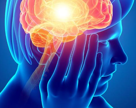研究表明心跳加速可能会改变决策大脑回路