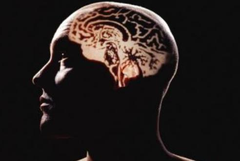 研究发现正常的脑震荡恢复可能需要长达一个月的时间