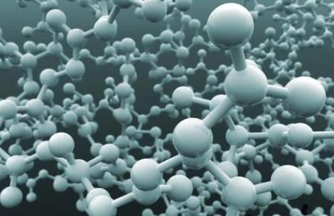 修复蛋白质生产错误可延长寿命
