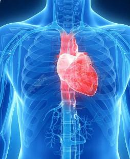 MMRI研究因触电而导致的心脏重叠现象