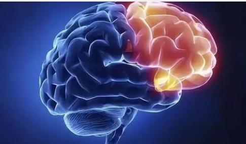 大脑噪音可能是精神病治疗效果的关键