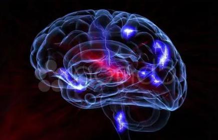 研究人员发现啮齿动物的大脑回路可能导致疼痛的负面情绪方面
