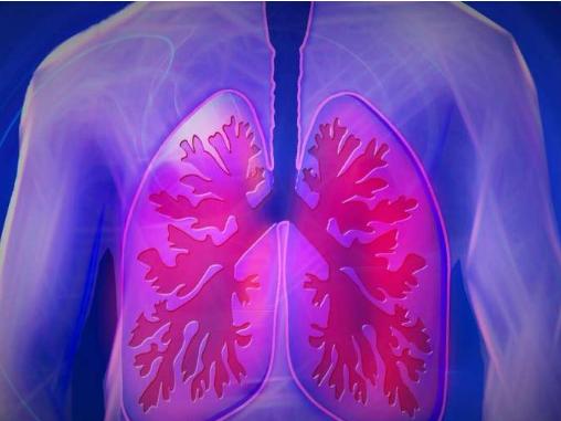 囊性纤维化的下气道即使在年轻时也很明显
