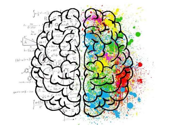 科学家超越个体大脑来研究集体思维