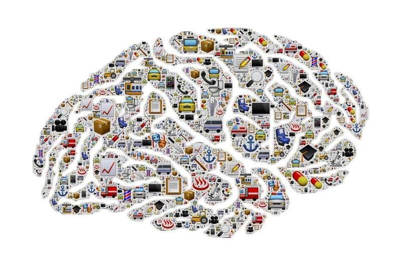 研究发现脂肪细胞在认知能力下降和神经退行性疾病中起核心作用