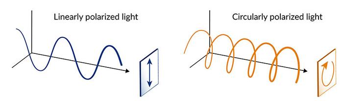 实验证实了量子材料对圆偏振激光的独特响应