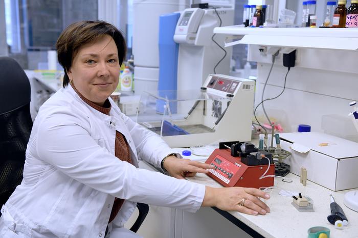 俄罗斯科学家发明了一种快速传感器来确定蜂蜜的毒性