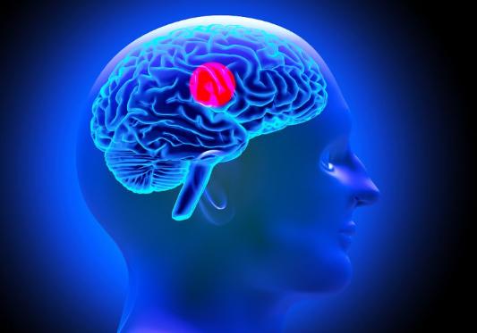 技术快速识别组织和肿瘤的物理状态