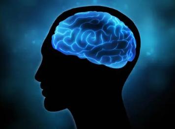 人工智能揭示了大脑如何处理语言