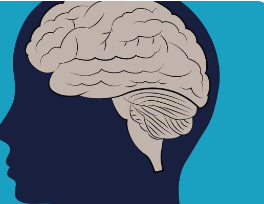 学习第二语言可以增强认知功能