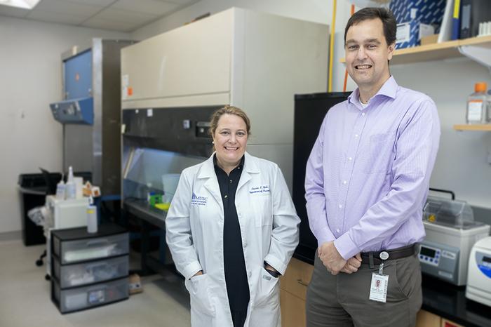 丙型肝炎治疗后较低的蛋白质活性可能预示着治愈疤痕肝脏的途径