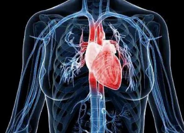 典型心房扑动合并房性心动过速的射频消融治疗