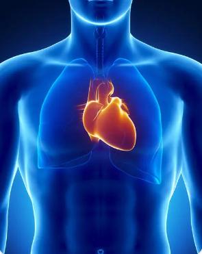 心脏粘液瘤患者血管造影可检测新生血管的临床意义