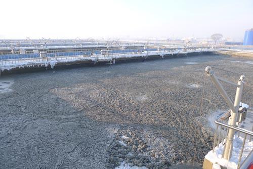 污水污泥导致生物燃料突破