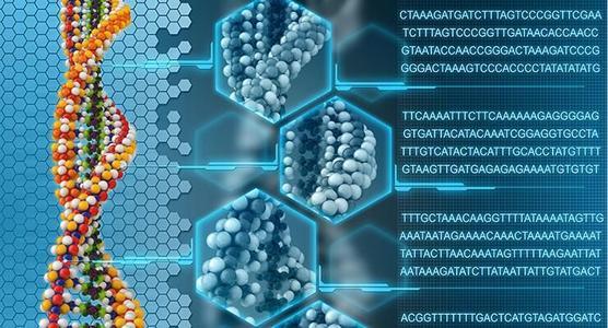 研究人员发现翻译基因可能在疾病中发挥作用