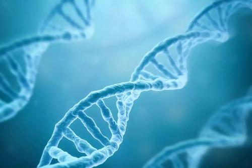 了解条件如何影响环境DNA分析