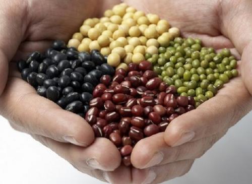 吃豆类可降低糖尿病风险