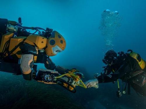 水下音景揭示了海洋环境的差异