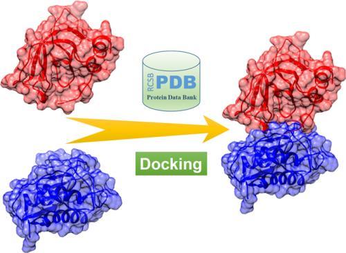 研究探讨了介体蛋白复合物在转录和基因表达中的作用