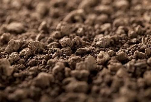 土壤可能受到气候变化的影响影响水和食物