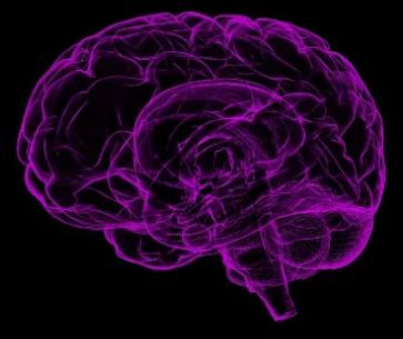 罗氏公司尽早结束了阿尔茨海默氏症的第三阶段药物试验