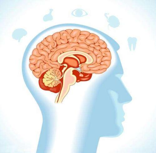 我们的大脑可能会在记住事情之前起伏不定