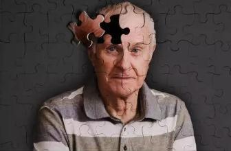 小鼠模型显示为什么视觉刺激可能会对抗老年痴呆症