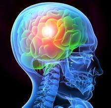 与阿尔茨海默氏病有关的神经元转运机制功能障碍