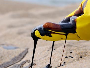 研究人员开发了一种可以从水和土壤中提取柴油的程序
