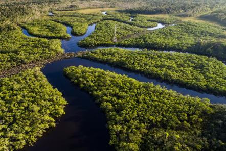 亚马逊部落建造鱼塘以度过长期的干旱