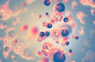 花椒是草药的一种主食 它显示出了强大的抗癌活性