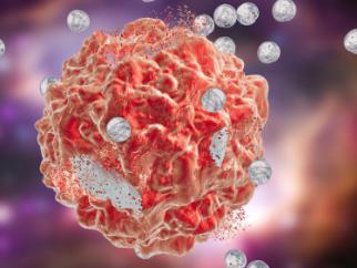 研究人员发现细胞利用糖分子相互交流