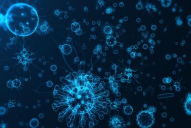 事实证明病毒相互融合可以逃避免疫系统