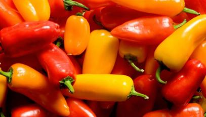 研究发现发现补充二氢辣椒素可改善葡萄糖耐量