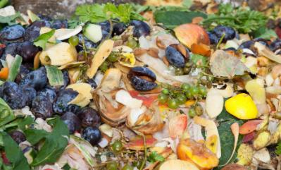 新的研究着眼于将食物垃圾转化为食物