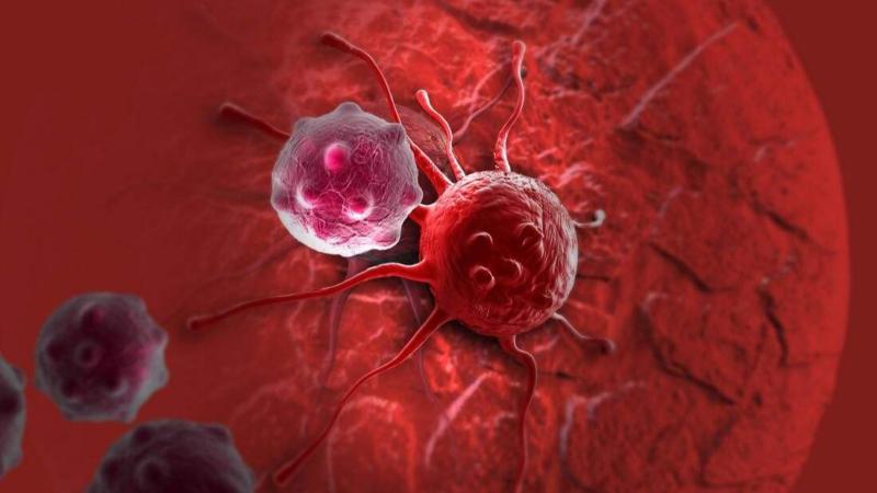 癌症的快速血液检查可以检测癌细胞的细胞信息