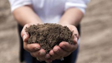 古代土壤细菌是预防现代超级细菌的关键