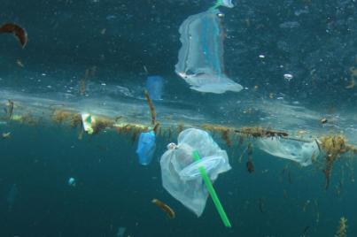 研究人员可以将塑料袋升级为锂离子电池的零件吗