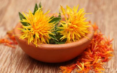 红花中的一种成分可预防乳腺癌的肺转移