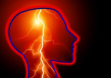 中药中广泛使用的植物可以保护神经元免受癫痫病的损害