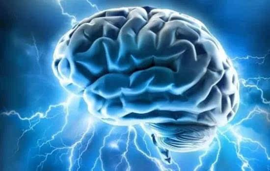 科学家揭示了大脑多感觉处理的机制