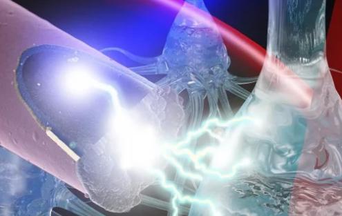 光激活的超小型电极可以实现更安全的神经刺激