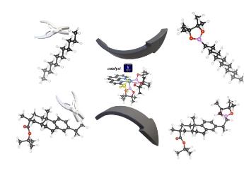 科学家终于破解了自然界最常见的化学键