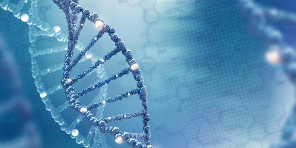 孩子还会遗传父母的那些基因