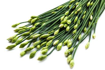 研究人员发现韭菜可以缓解慢性肾功能衰竭