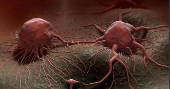 研究人员确定了指导癌症治疗的磷酸化生物标志物
