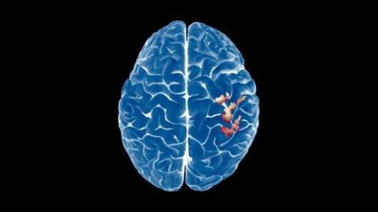科学家们找到了做出价值决策的大脑区域
