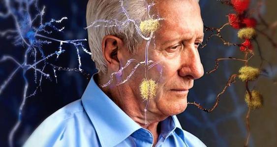 研究人员揭示了与阿尔茨海默氏症相关的蛋白质的基本作用